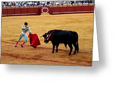 Bullfighting 22 Greeting Card