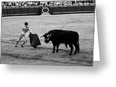 Bullfighting 22b Greeting Card