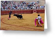 Bullfighting 35 Greeting Card