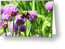 Bumble Bee And Chives Greeting Card