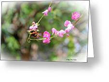 Bumble Bee2 Greeting Card