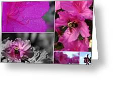 Bumblebee Bonanza Greeting Card