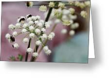 Bumblebee Gang Greeting Card