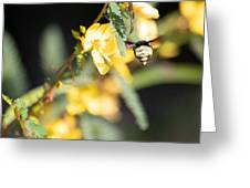 Bumblebee Heading Into Work Greeting Card