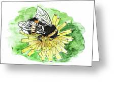Bumblebee Greeting Card