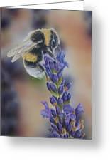 Bumblebee Nr3 Greeting Card