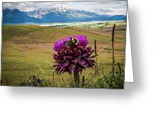 Bumblebee With The Best View Greeting Card