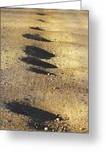 Bumps In The Road Greeting Card