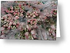 Bundles Of Pink Roses Are Gathered Greeting Card