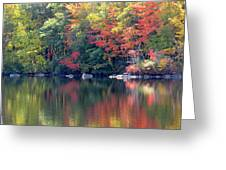 Bunganut Lake Maine Foliage 13 2016 Greeting Card