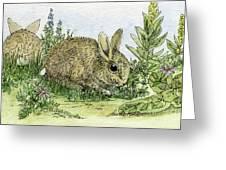 Bunnies Greeting Card