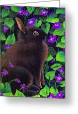 Bunny And Violets Greeting Card