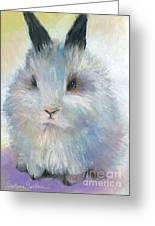 Bunny Rabbit Painting Greeting Card by Svetlana Novikova