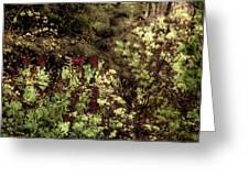 Burgandy Liliacs II Greeting Card