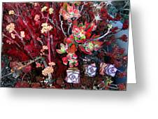 Burgundy Succulents. Multi Color Beauty Greeting Card