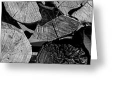 Burned Wood In The Pile Greeting Card