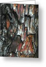 Burnt Tree Abstract Greeting Card