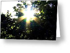 Burst Of Sunlight Greeting Card