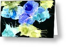 Bursting Comets 2017 - Blue And Green On Black Greeting Card