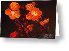 Bursting Into Bloom Greeting Card