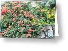 Bush Full Of Flowers. Greeting Card