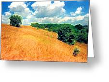 Bushes On A Hill Ae Greeting Card