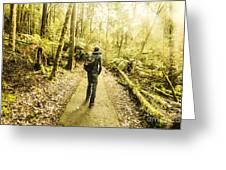 Bushwalking Tasmania Greeting Card