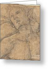 Bust Of A Youth Looking Upward [recto] Greeting Card