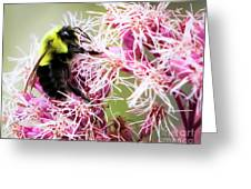 Busy As A Bumblebee Greeting Card