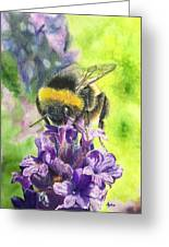 Busy Bumblebee Greeting Card