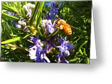 Busy Rosemary Honeybee Greeting Card