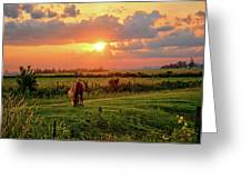Butler Center Pasture Greeting Card