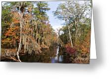 Butler Creek In Autumn Colors Greeting Card