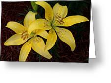 Buttercream Lilies Greeting Card