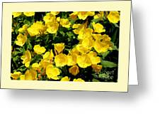 Buttercup Flowers Greeting Card