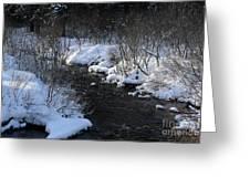 Butterfield Brook Greeting Card