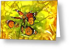Butterflies Greeting Card by Ankeeta Bansal