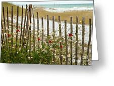 Butterflies By The Seashore Greeting Card