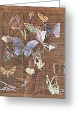 Butterflies On A Tree Greeting Card