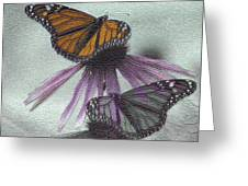 Butterflies Under Glass Greeting Card