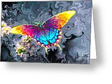 Butterfly - Greeting Card