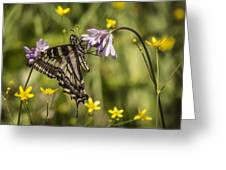 Butterfly 10 Greeting Card