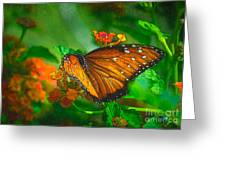 Butterfly 30 Greeting Card