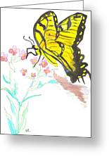 Butterfly At Play Greeting Card