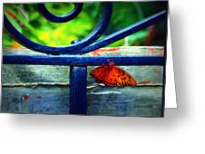 Butterfly At The Gate Greeting Card