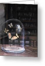 Butterfly Belljar  Greeting Card