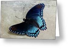 Butterfly Blue On Groovy Greeting Card