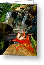 Butterfly Brook Greeting Card