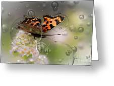 Butterfly Bubbles Greeting Card