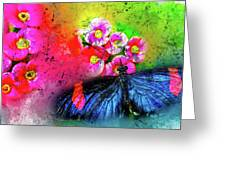 Butterfly Color Explosion Greeting Card